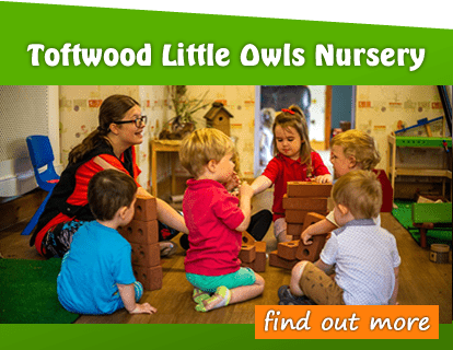 Toftwood Little owls Day Nursery dereham noroflk