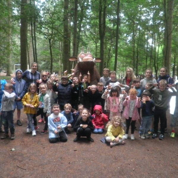 hoots holiday club visit to bewilderwood