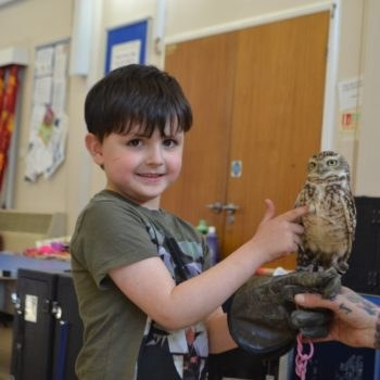 hoots holiday club activities
