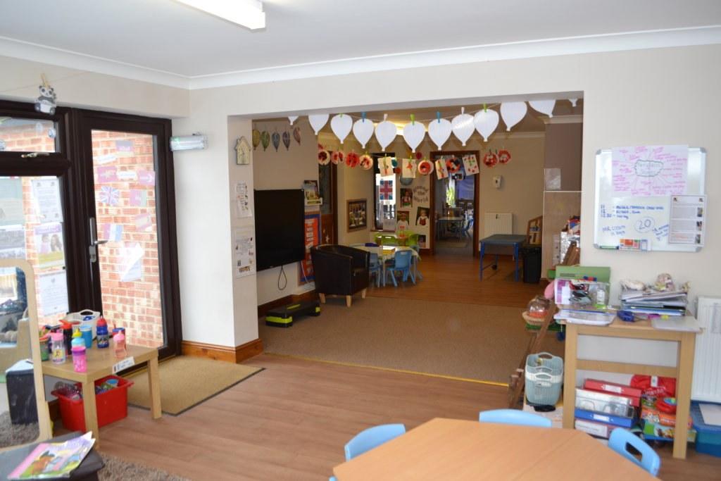 Barn Owl main Area Toftwood nursery dereham norfolk