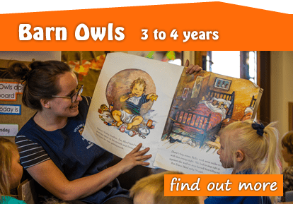 Toftwood Barn Owls