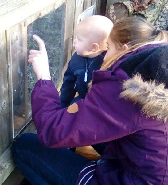 Little Owls Nursery Norfolk Feeding The Horses (3)