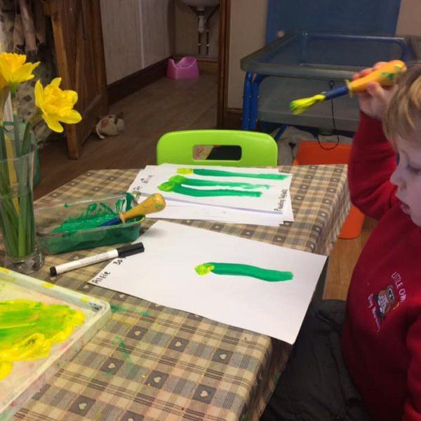 Daffodils At Little Owls Day Nursery Norwich (3)