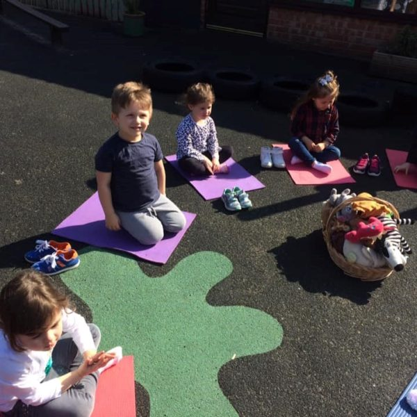 Mini Me Yaga At Little Owls Nursery Norfolk (12)