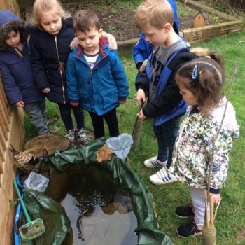 Our Nature Garden Pond At Little Owls Day Nursery Norfolk (2)