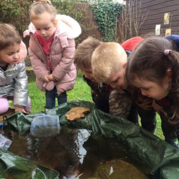 Our Nature Garden Pond At Little Owls Day Nursery Norfolk (5)