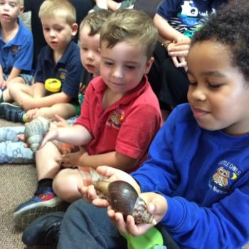 Mini Minsters Return To Little Owls Nursery Near Norwich (5)