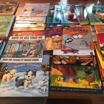 New Books At Little Owls Nursery Dereham Norfolk