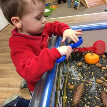 Harvest At Littlw Owls Day Nusery (1)
