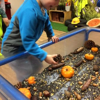 Harvest At Littlw Owls Day Nusery (2)