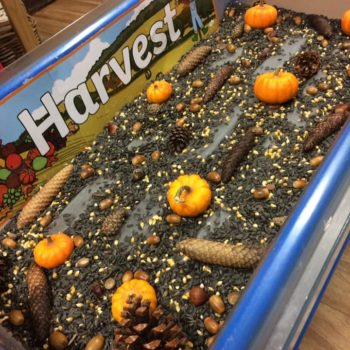 Harvest At Littlw Owls Day Nusery (3)