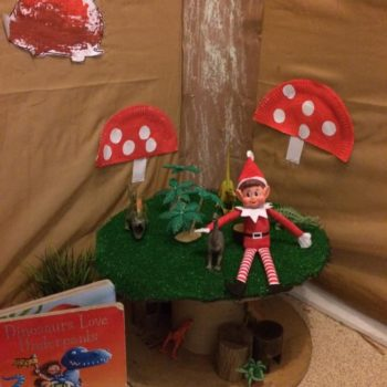 Baddy The Elf At Little Owls Scarning Norfolk (4)