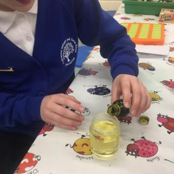 Science At Hoots After School Club (4)
