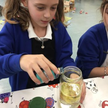Science At Hoots After School Club (5)
