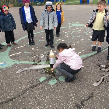 Science Ecperiment At After School Club Dereham (7)