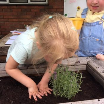 Smell And Touch Senses Little Owls Nursery Dereham (2)