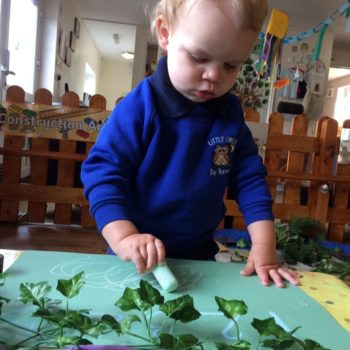 Natural Resources Are Being Used At Little Owls Day Nursery (14)