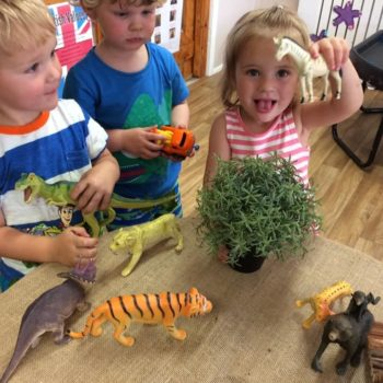Learning About Animals At Little Wols Day Nursery Near Norwich (2)