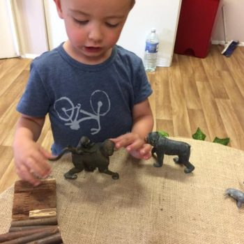 Learning About Animals At Little Wols Day Nursery Near Norwich (3)