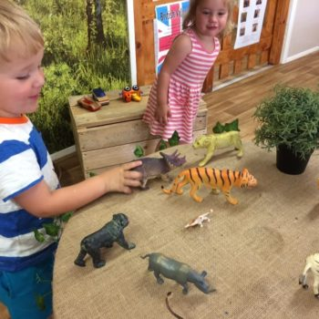 Learning About Animals At Little Wols Day Nursery Near Norwich (5)