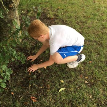 Loads Of Activities At Hoots Holiday Club Near Norwich (13)