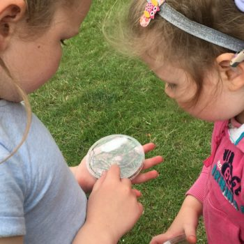 Loads Of Activities At Hoots Holiday Club Near Norwich (26)