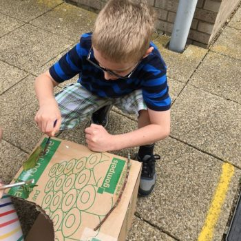 Loads Of Activities At Hoots Holiday Club Near Norwich (32)