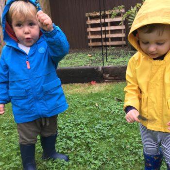 Bug Hunting At Little Owls Toftwood Norfolk (3)
