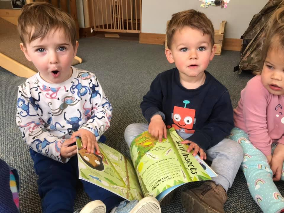 Reading About Bugs At Liitle Owls Childcare Near Norwich (2)