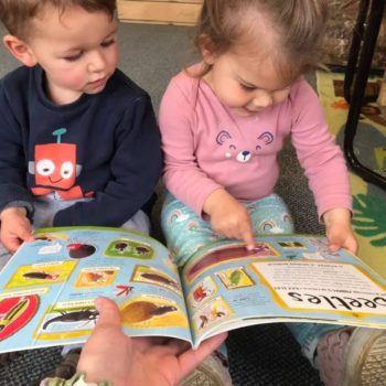 Reading About Bugs At Liitle Owls Childcare Near Norwich (4)