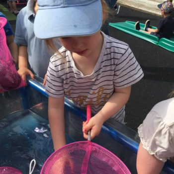 World Ocean & Environment Day At Little Owls Child Nursery Norfolk (24)