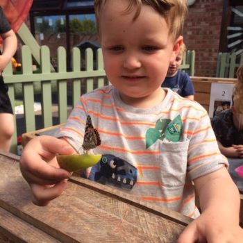 Butterfly Release Day At Little Owls Day Nursery (4)