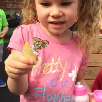 Butterfly Release Day At Little Owls Day Nursery (7)