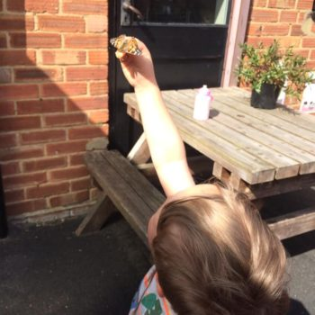 Butterfly Release Day At Little Owls Day Nursery (8)