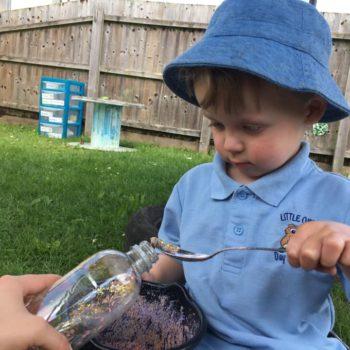 Little Owls Children Making Music (5)