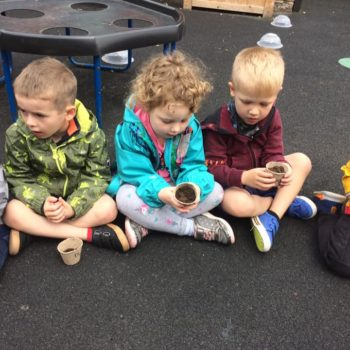 Planting Sunflower Seeds At Little Owls Day Care (2)