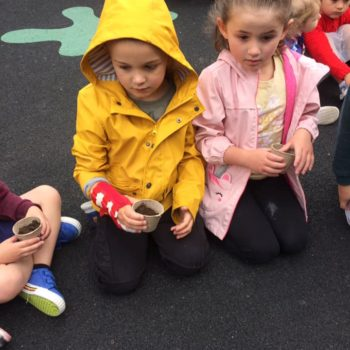 Planting Sunflower Seeds At Little Owls Day Care (4)