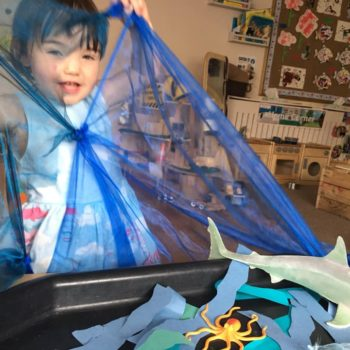 Sea Creatures At Little Owls Baby Care Norwich (4)