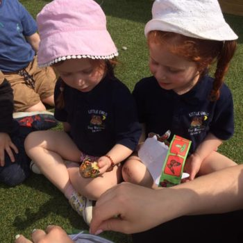 Setting Our Butterflies Free At Little Owls (1)
