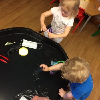 We Care For The Environment At Little Owls Daycare Dereham (3)