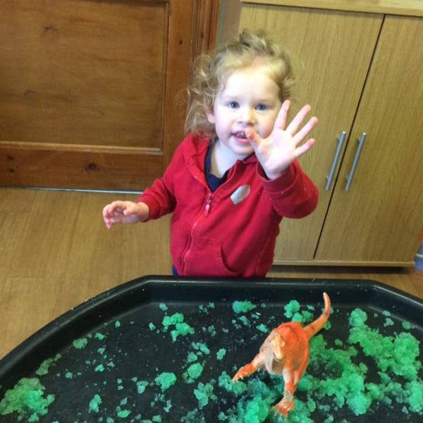 Dinosaus At Little Owls Childcare In Norfolk (6)