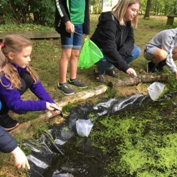 Pond Life At Hoots Holiday Club (11)