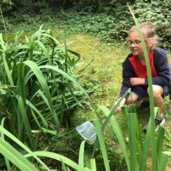 Pond Life At Hoots Holiday Club (4)