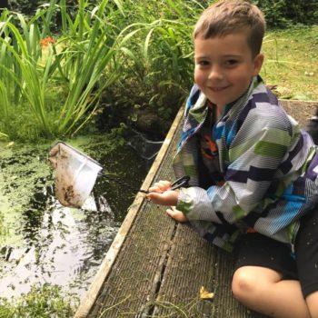 Pond Life At Hoots Holiday Club (8)